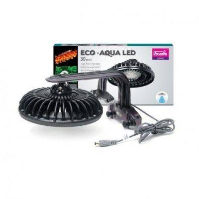 ARCADIA LAMPA LED SPOT WHITE XPG 30W 6500K