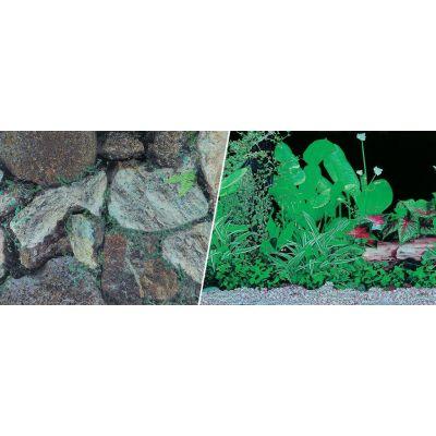 Tło dwustronne w rolce skały-rośliny