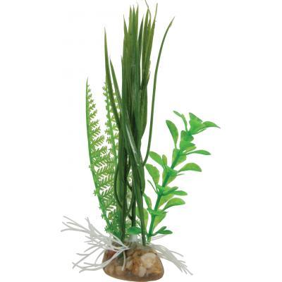 ZOLUX Kompozycja roślin mała