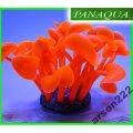 AZOO NEON CORAL L (AZ27152) Czerwony