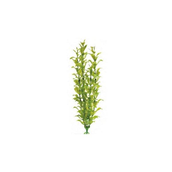 Atman Sztuczna Roślina HYGROPHILA 18-21 cm