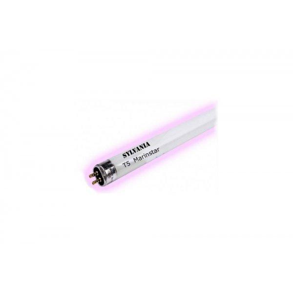 Świetlówka Sylvania MARINSTAR T5 24W 550mm