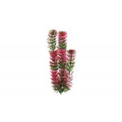 Atman Sztuczna Roślina RED ANACHARIS 13-16 cm